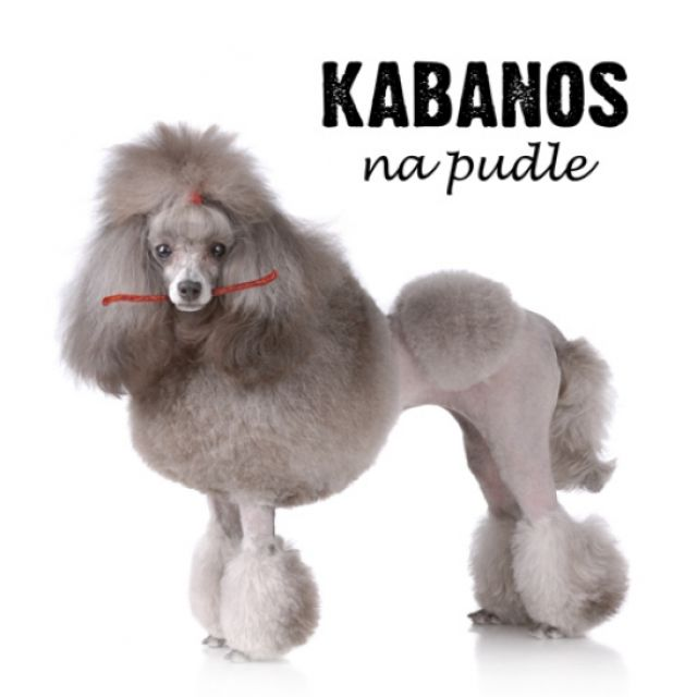 kabanos-na-pudle-(pre-order)-plyta.jpg